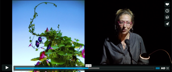 vimeo-screen-shot